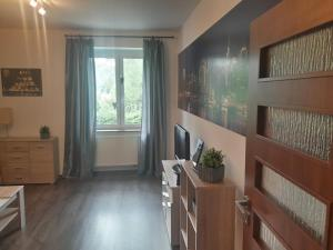 Apartament SM Stronie Śląskie