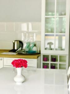 Apartamenty Platinum