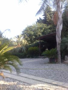 La Calabrisella, Farm stays  Davoli - big - 72