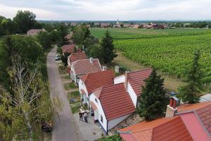 Penzion Pod Vápenkami, Guest houses  Strážnice - big - 49