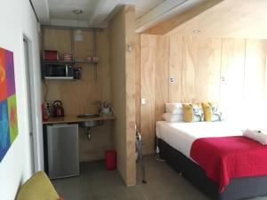 Wellington City Studio - Apartment - Wellington