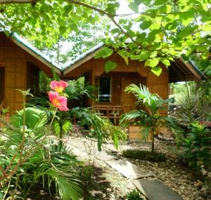 Auberges de jeunesse - Palm Tree Guesthouse