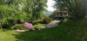 Villa Nancy - AbcAlberghi.com