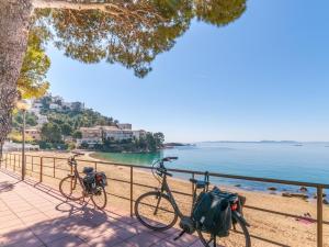 Holiday home Can Bertu, Prázdninové domy  Sant Pere Pescador - big - 31