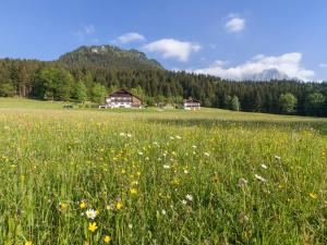obrázek - Ferienhaus Lehen