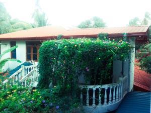 Bougainvillea Hotel - Diyature Egoda