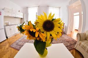 Apartament A&F, Ferienwohnungen  Sibiu - big - 1