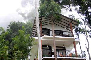 Auberges de jeunesse - Hill Forest Cottage