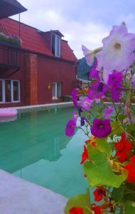 Otel Kavkazioni Twins, Hotely  Lagodechi - big - 41