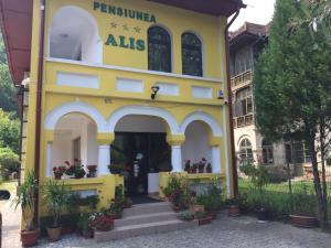Auberges de jeunesse - Pensiunea Alis