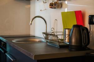 Studio Apartment Mila, Appartamenti  Kopaonik - big - 28