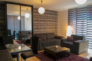 Studio Apartment Mila, Appartamenti  Kopaonik - big - 40