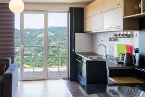 Studio Apartment Mila, Appartamenti  Kopaonik - big - 41
