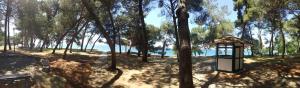 Novigrad Istria