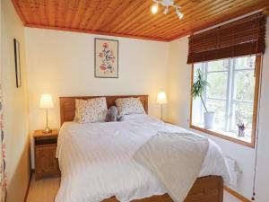 Three-Bedroom Holiday Home in Svangsta, Dovolenkové domy  Svängsta - big - 7