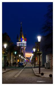 Batumi Mgzavrebi Hotel, Hotely  Batumi - big - 33