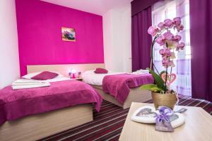 Hotel Villa Sandi - Soboli