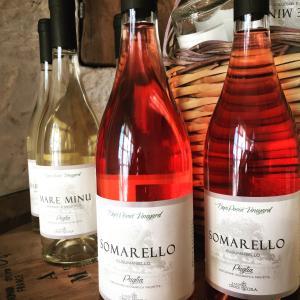 obrázek - Masseria Croce Piccola - Wineyard
