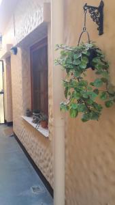 La Tranquera Alquiler Temporario, Bed and Breakfasts  Cafayate - big - 12