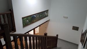 Club rezidence Apartmány Pod Lučí, Appartamenti  Loučovice - big - 55