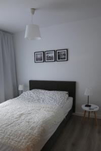 BJ Apartamenty