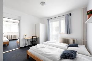 Auberges de jeunesse - Hotel Horní Pramen