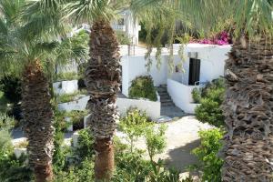 Hotel - Apartments Delfini, Hotely  Kissamos - big - 23