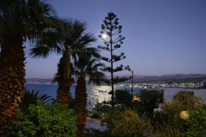 Hotel - Apartments Delfini, Hotely  Kissamos - big - 24