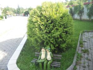 Mini Hotel Furmi, Inns  Skhidnitsa - big - 42