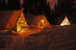 Location gîte, chambres d'hotes Altipik - Lodges Insolites dans le département Haute Savoie 74