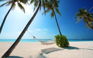Nicest Beach in Hotel Zone