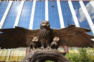 Snowy Owl Hotel - Pervomayskiy