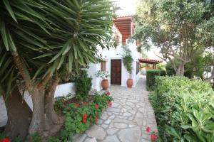 Anemoesa Andros Greece