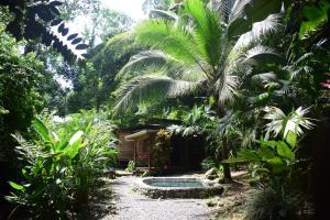 Casa Madera, Punta Uva