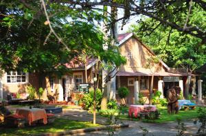 Mica Village, Отели типа «постель и завтрак»  Mica - big - 16