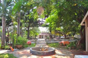 Mica Village, Отели типа «постель и завтрак»  Mica - big - 19
