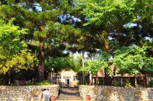 Mica Village, Отели типа «постель и завтрак»  Mica - big - 25