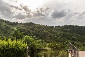 Colleverde Country House, Hotels  Urbino - big - 153