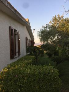 Villa Green, Vily  Partinico - big - 18