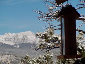 Blue Sky Mountain Ranch, Prázdninové domy  Black Hawk - big - 34