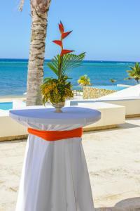 Las Verandas Hotel & Villas, Resort  First Bight - big - 95