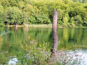 Green Eden, Panziók  Gornji Zvečaj - big - 59