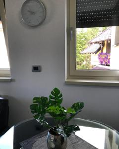 Apartment Star, Апартаменты  Златибор - big - 51