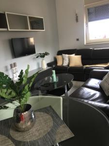 Apartment Star, Апартаменты - Златибор