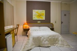 Litani Park Hotel, Hotel  Santa Fé do Sul - big - 22