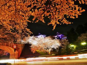 Hotel Wing International Premium Kanazawa Ekimae, Economy-Hotels  Kanazawa - big - 266