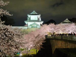 Hotel Wing International Premium Kanazawa Ekimae, Economy-Hotels  Kanazawa - big - 267