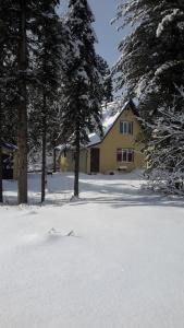 Guest house Kedrovyi - Tashtagol