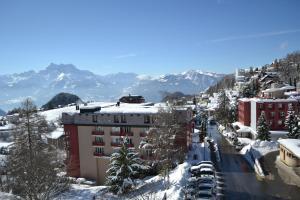 Alpine Classic Hotel - Leysin