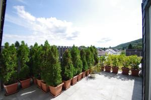 Luxury Apartment Bonn